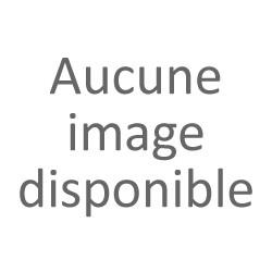 BROCHETTE DE PORC FERMIER aux girolles
